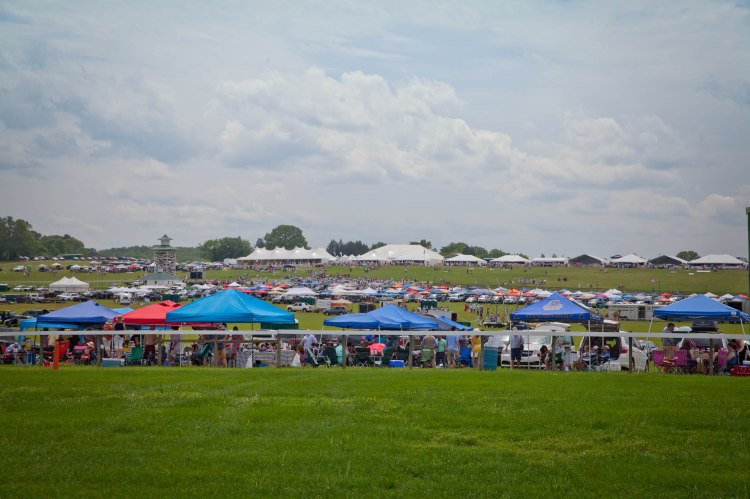 Steeplechase (7 of 27).jpg