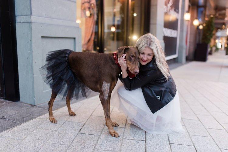 party dress, puppy in a tutu
